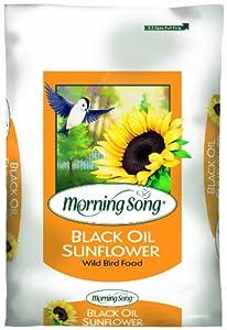 Morning Song 1022027 Black Oil Sunflower, 20-Pound