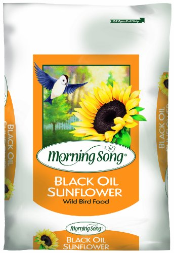 Morning Song 11410 Black Oil Sunflower Wild Brid Food, 50-Pound (Morning Song Sunflower Seeds compare prices)