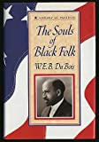 The Souls of Black Folk (Library of Freedom)