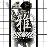 "MIYAVI THIS IZ THE JAPANESE..von ""Miyavi"""