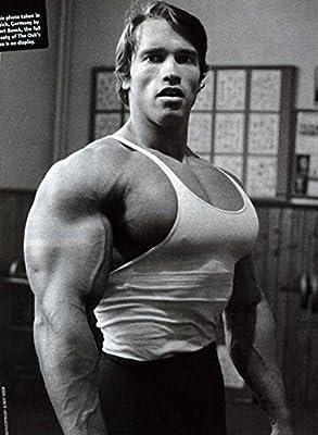 Arnold Schwarzenegger Inspiration Bodybuilding poster 32 inch x 24 inch / 17 inch x 13 inch