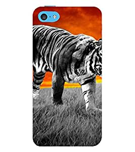 tiger a beautifull and powerfull creation of nature 3D Hard Polycarbonate Designer Back Case Cover for Apple iPhone 5C