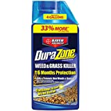 Bayer Crop Science 704330A Concentrate Weed Killer, 32-Ounce