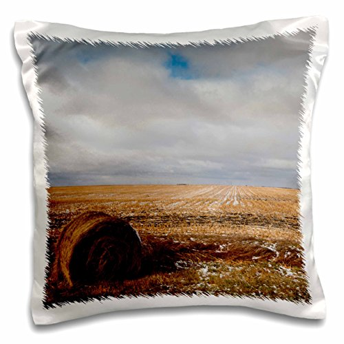 danita-delimont-walter-bibikow-agriculture-usa-north-dakota-pillsbury-farm-field-early-winter-16x16-