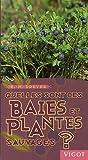 echange, troc Eva-Maria Dreyer - Quelles sont ces baies et plantes sauvages ?