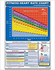 Weight Loss Exercise For Middle Aged Males - Easy Guide |Exercise Heart Rate Chart