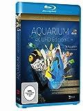Image de Aquarium 4K UHD Edition