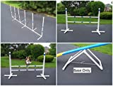 Agility Gear Advanced Package with Free Standing Jumps