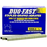 Duo Fast 5008C 20 Gauge Galvanized Staple 1/2-Inch Crown x 1/4-Inch Length, 5000 Pack