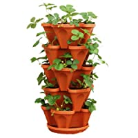 5 Tiered Hanging and Stacking Vertical Strawberry Planter Pot - Learn How to Grow Organic Strawberries Easy with these Cool indoor outdoor Terracotta Plastic Containers - Great Garden Planting Pots Kit - Planters Also Used For Pepper Herbs Flower Tomato Succulent Green Bean - Free Growing Gardening Plant Tips - Perfect Gifts For Mom or Dad