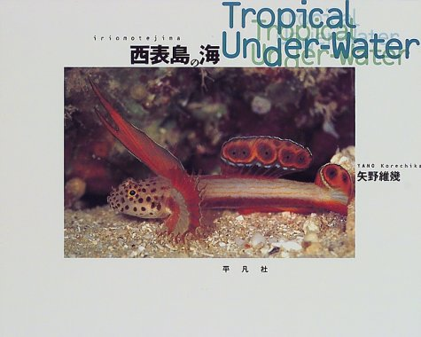 西表島の海―Tropical Under‐Water