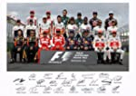 FORMULA ONE 2013 SEASON SIGNED BY ALL...