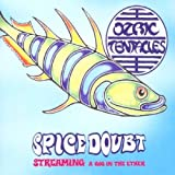 Spice Doubt: A Gig in Ether by Ozric Tentacles (2003-02-03)