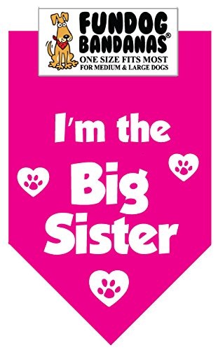 Big Sister Bandana for Medium to Large Dogs - hot pink (Dog Big Sister Shirt compare prices)