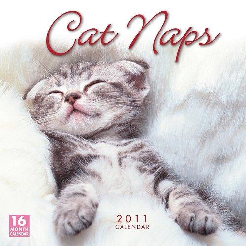 Cat Naps 2011 Wall Calendar (Calendar)