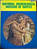 img - for The National Archeological Museum of Naples book / textbook / text book
