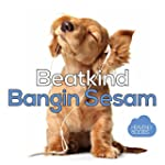 Bangin Sesam (Remixes)