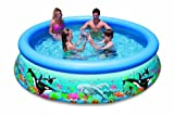Intex Ocean Reef 10ft x 30in Easy Set Pool Only #28124