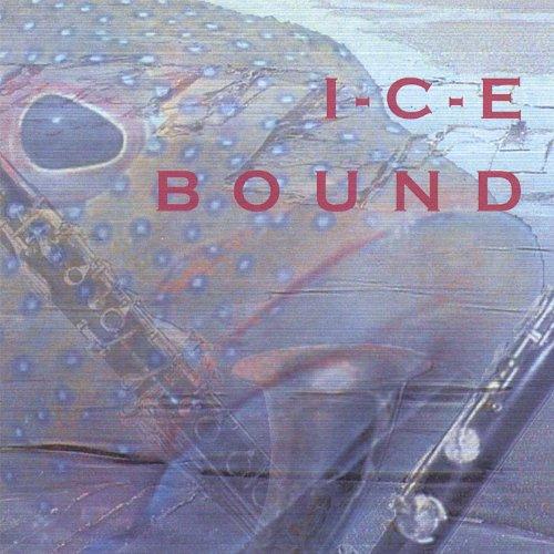 I-C-E Bound картридж струйный epson c13t17014a10 черный для epson xp33 203 303