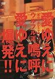 「男のピカレスクロマン」愛ゆえに嗚呼愛ゆえに爆発!! [DVD]
