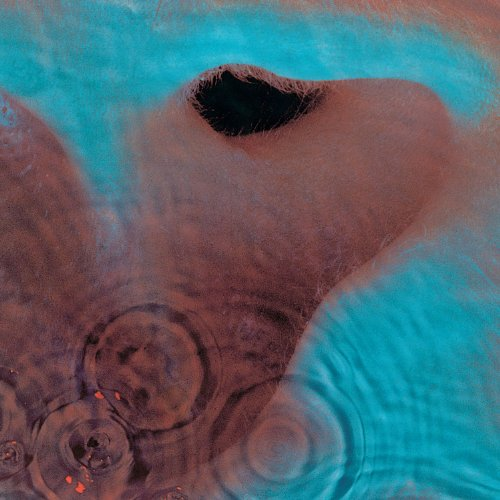 Pink Floyd - Meddle (LP) [Harvest-Odeon, OP-80375] - Zortam Music
