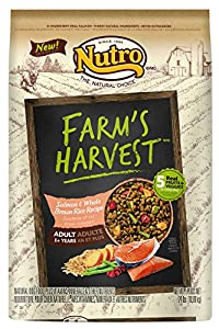 The Nutro Company Farm's Harvest Adult Salmon and Whole Brown Rice Recipe, 24-Pound