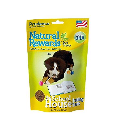Bergan Pet Natural Rewards Dog Treats, The School House
