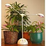 和光 植物育成LEDスタンド マイプラント 太陽光に替わる優しい光り