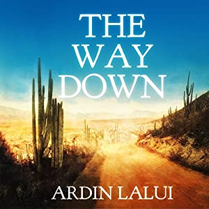 The Way Down Audiobook