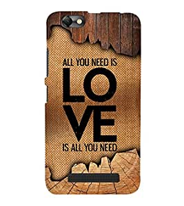 Love Is All You Need 3D Hard Polycarbonate Designer Back Case Cover for Lenovo A2020