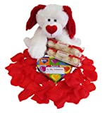 Gift Set Be My Valentine Plush Dog with Ferrero Raffaello