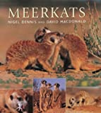 Meerkats (1868723100) by David Macdonald