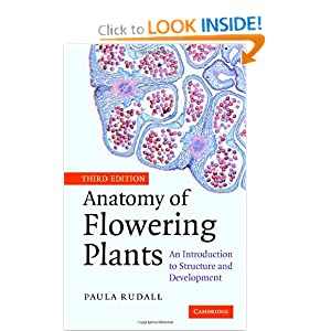 Amazon.com: Anatomy of Flowering Plants: An Introduction to ...