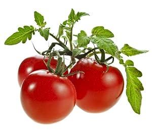 Amazon.com : Patio Tomato Seeds - Hybrid : Tomato Plants : Patio, Lawn