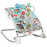 Fisher-Price Deluxe Infant to Toddler Comfort Rocker Bouncer