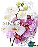 Sticker Autocollant Abattant WC Orchidée Couleur 35x42cm réf SAW0382