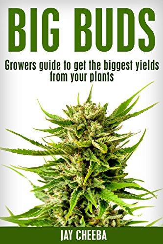 Marijuana: Big Buds, Growers guide to get the biggest yields from your plants (Growing Marijuana, Marijuana Cultivation, Cannabis, Medical Marijuana)