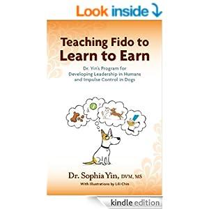 Learn To Earn Flyer - Sophia Yin