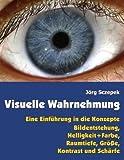 Visuelle Wahrnehmung: Eine Einführung in die Konzepte Bildentstehung,  Helligkeit und Farbe,  Raumtiefe, Größe,  Kontrast und Schärfe