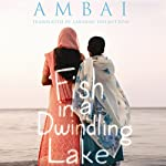 Fish in a Dwindling Lake |  Ambai,Lakshmi Holmstrom (translator)