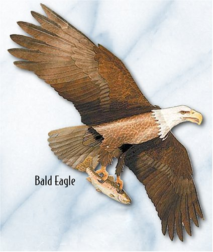 Jackite American Bald Eagle - Assembled