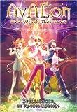 Avalon: Web of Magic Book 5: Spellsinger (Bk. 5)