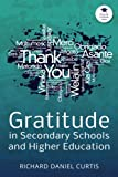 Gratitude in Secondary Schools and Higher Education: A Guide for Staff Working with Young People (Gratitude in Schools Series) (Volume 5)