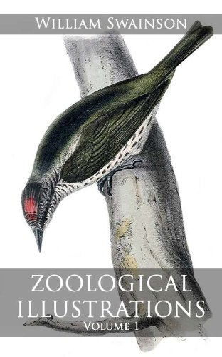 Zoological Illustrations