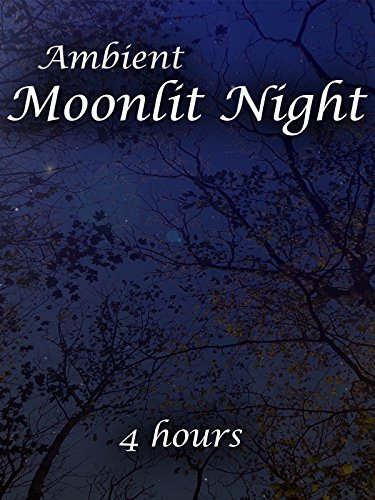 Ambient Moonlit Night (4 hours)