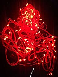 Decorative Red LED Light 25 Feet Long