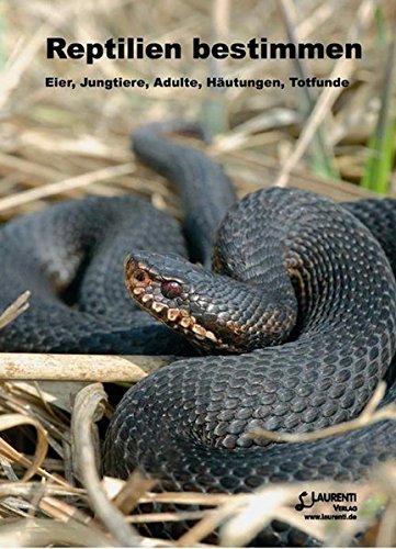 reptilien-bestimmen-eier-jungtiere-adulte-hautungen-totfunde-zeitschrift-f-feldherpetologie-suppleme
