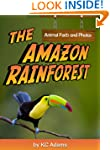 The Amazon Rainforest: Animal Facts &...
