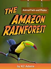 The Amazon Rainforest: Animal Facts & Photos