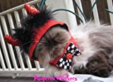 "Little Devil costume hat for cats and dogs (x-small (6-10"" collar))"